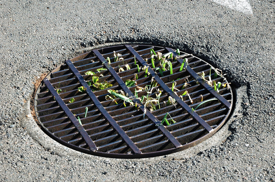 Catch basin drain